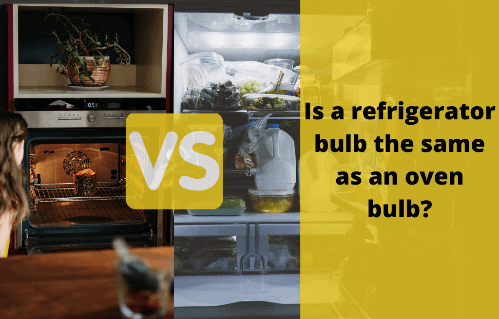 Can You Use A Regular Light Bulb In A Refrigerator vs